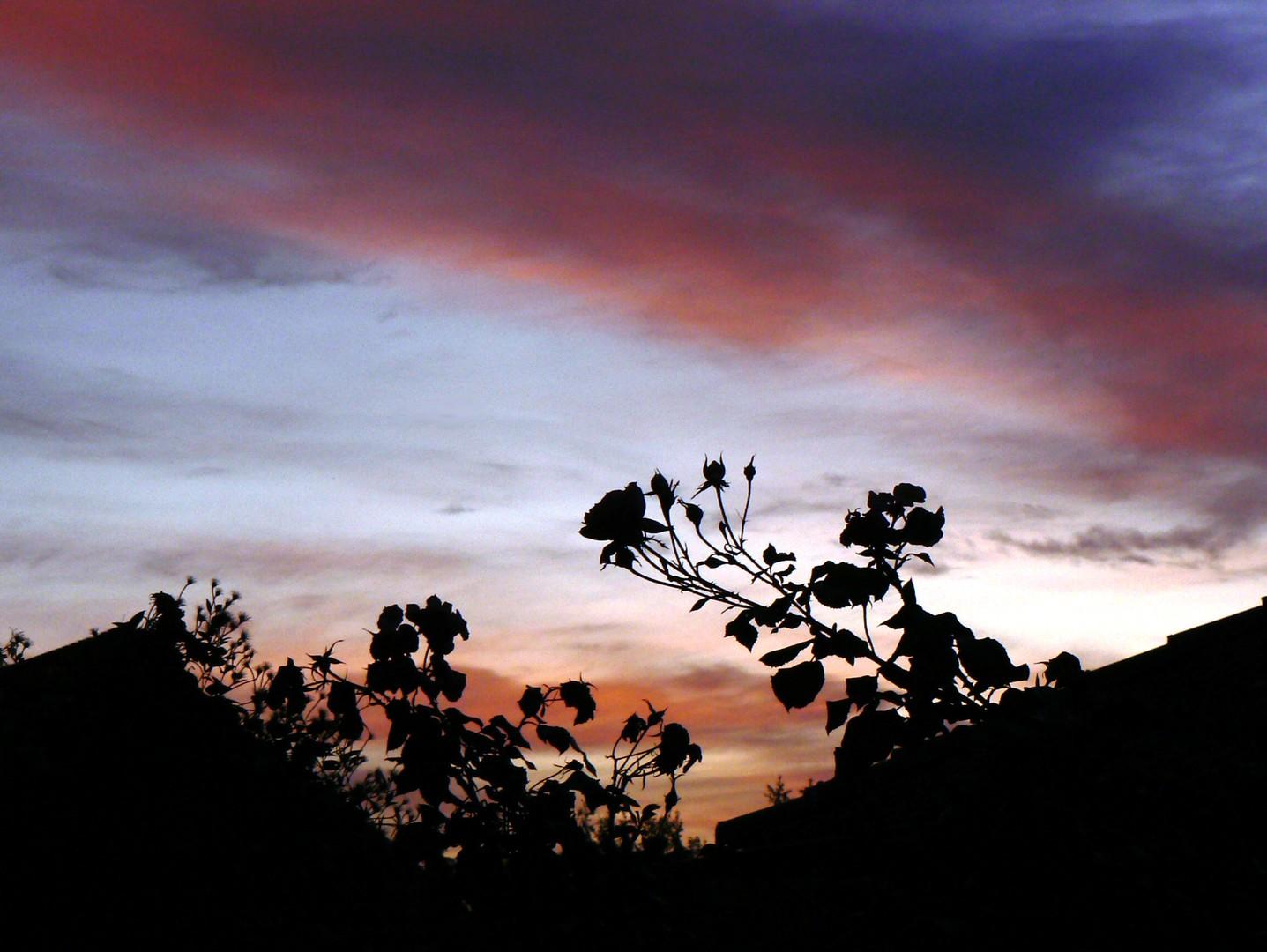 6 Minuten vor Sonnenaufgang...