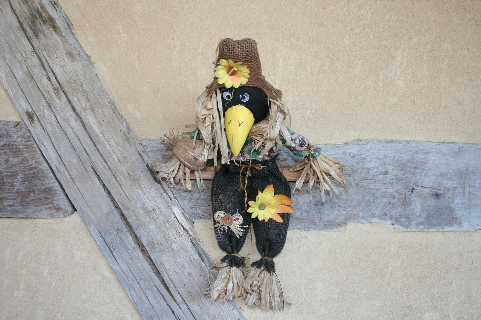 Fun - Oiseau